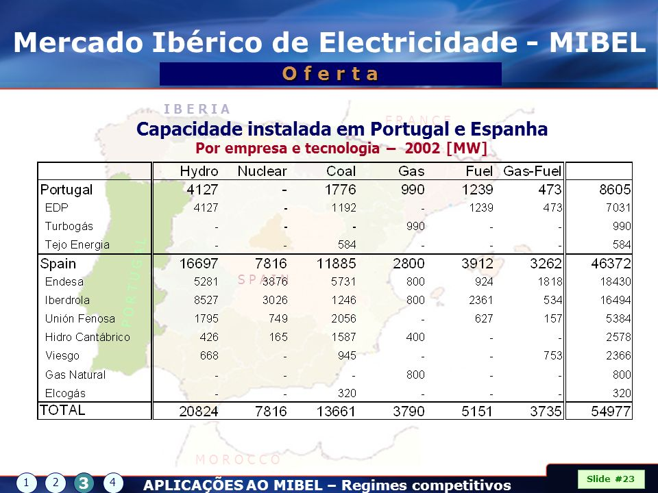 Mercado Ibérico de Electricidade - MIBEL
