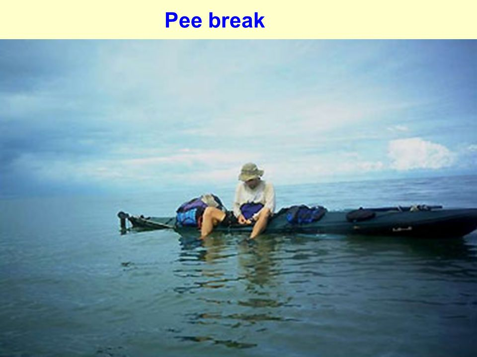 Pee break