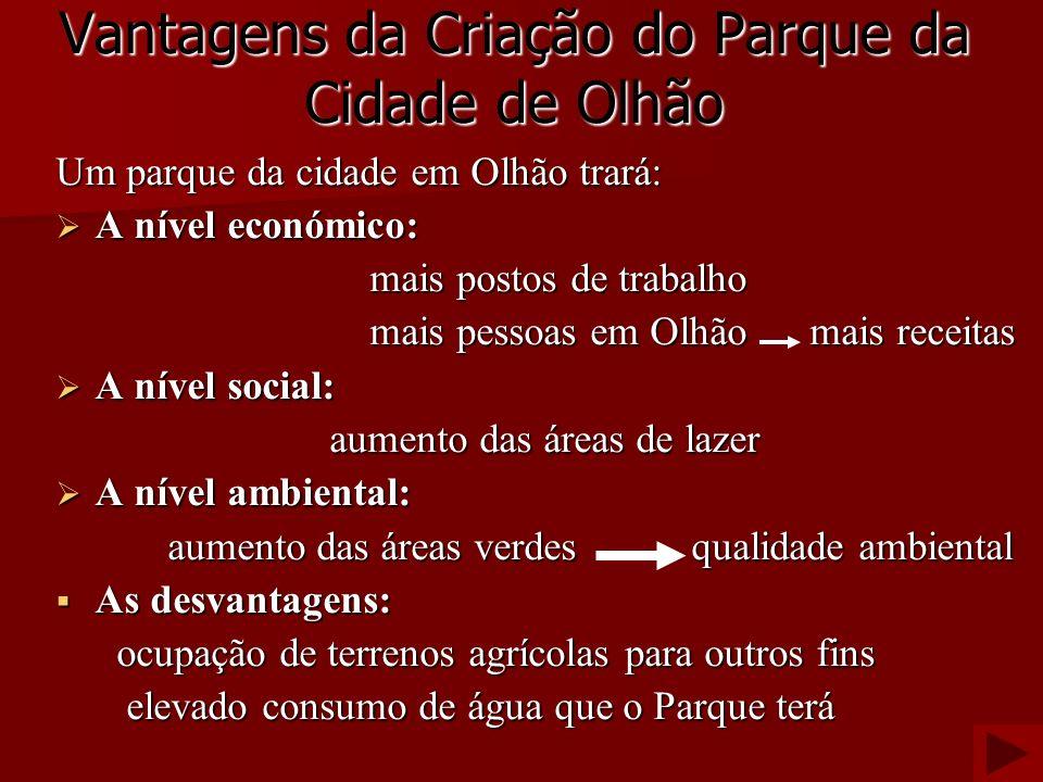 Vantagens da Criação do Parque da Cidade de Olhão