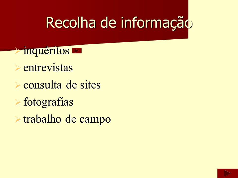 Recolha de informação inquéritos entrevistas consulta de sites