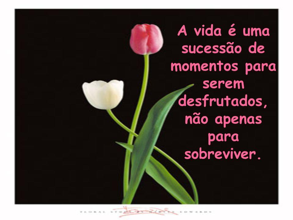 A vida é uma sucessão de momentos para serem desfrutados, não apenas para sobreviver.