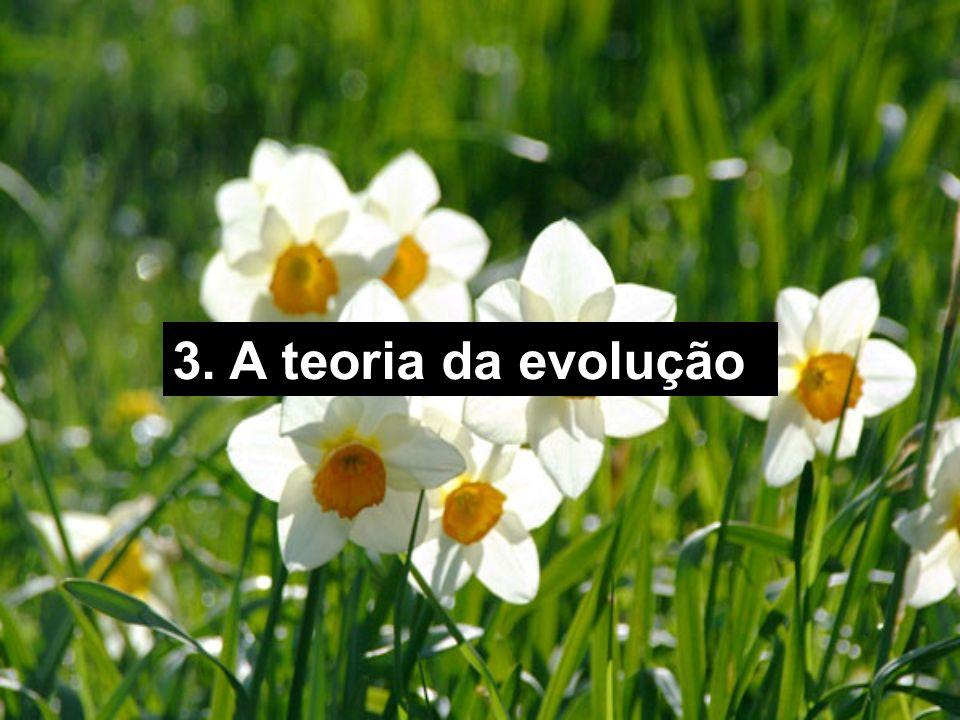 3. A teoria da evolução