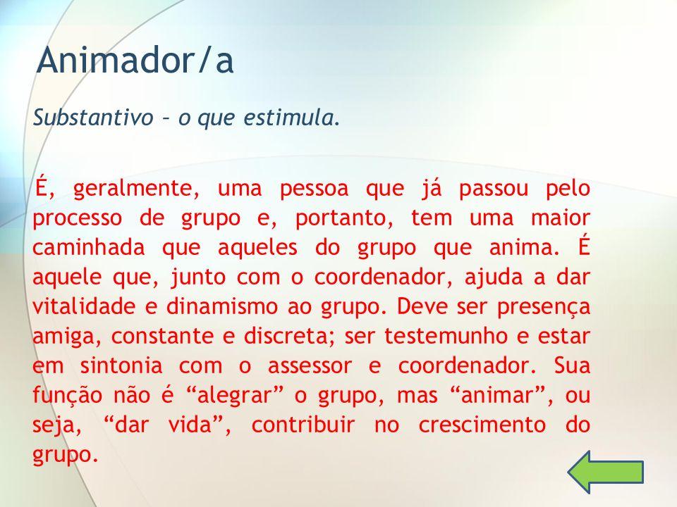 Animador/a