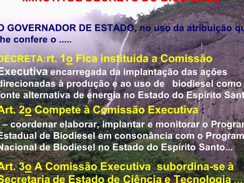 Art. 2o Compete à Comissão Executiva :