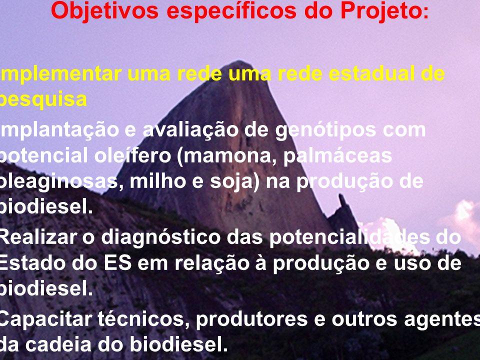Objetivos específicos do Projeto: