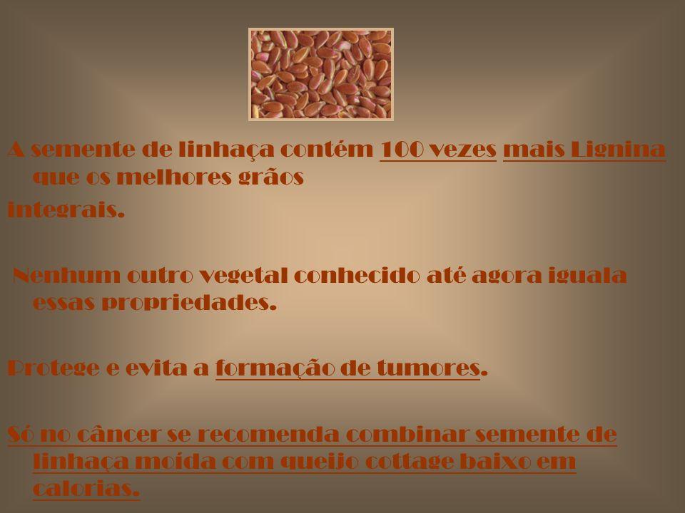 A semente de linhaça contém 100 vezes mais Lignina que os melhores grãos