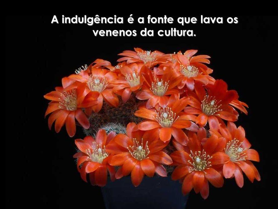 A indulgência é a fonte que lava os venenos da cultura.