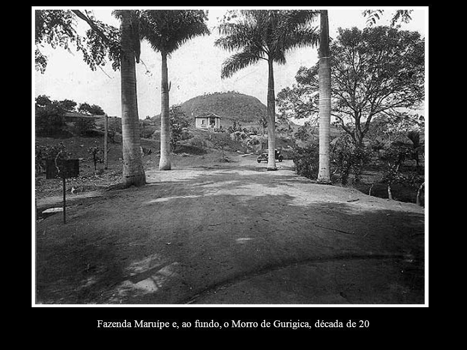 Fazenda Maruípe e, ao fundo, o Morro de Gurigica, década de 20