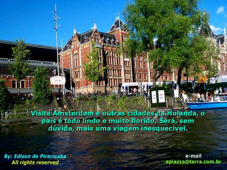 Visite Amsterdam e outras cidades da Holanda, o país é todo lindo e muito florido.