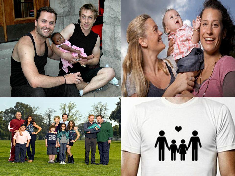Novas famílias 1 14