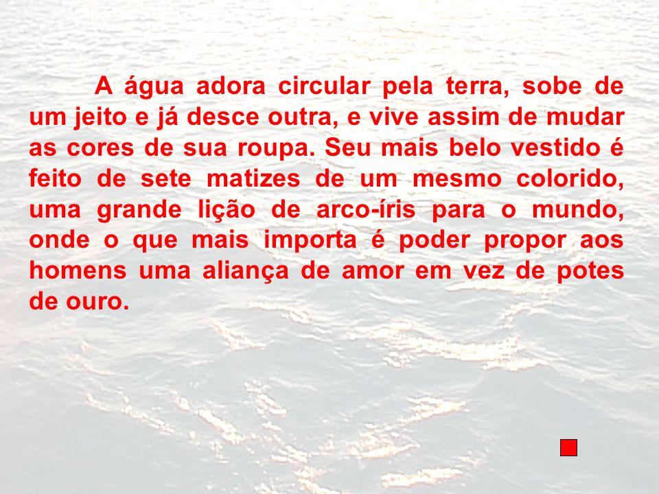 A água adora circular pela terra, sobe de um jeito e já desce outra, e vive assim de mudar as cores de sua roupa.