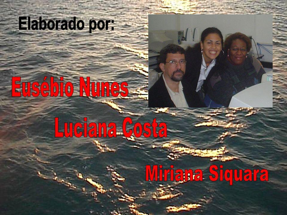 Elaborado por: Eusébio Nunes Luciana Costa Miriana Siquara