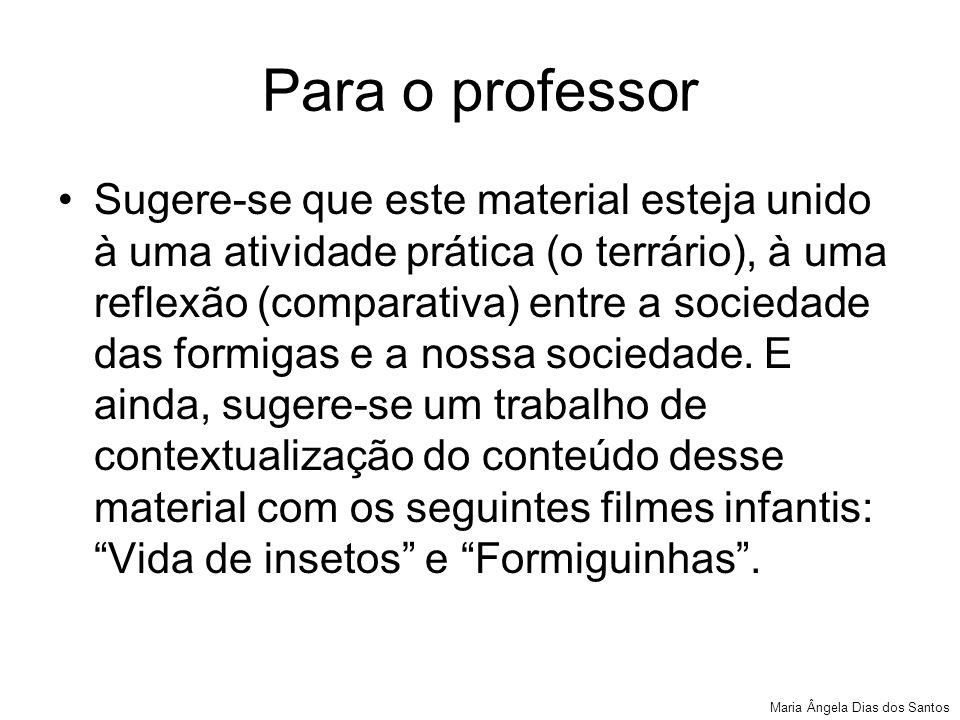 Para o professor