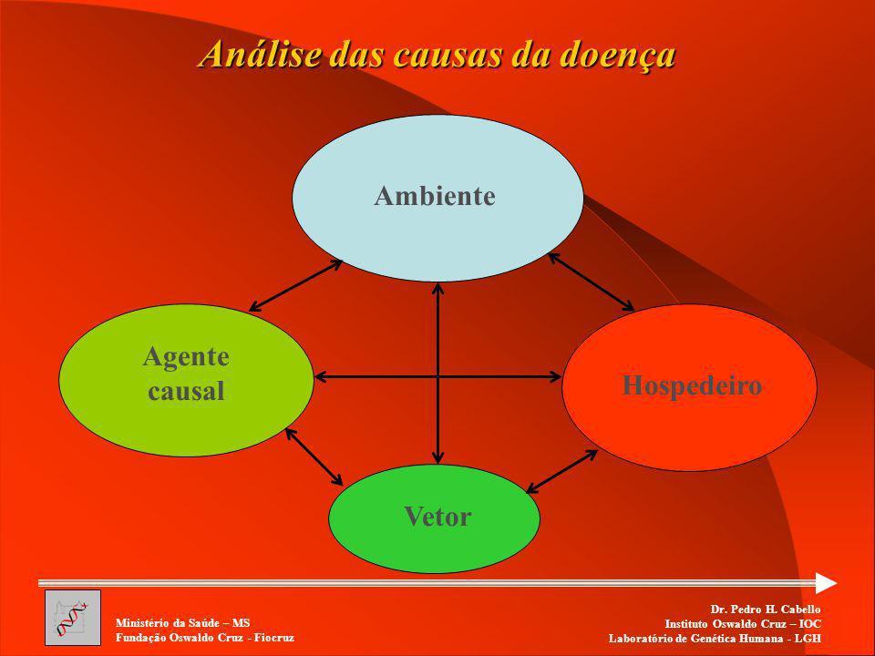 Análise das causas da doença