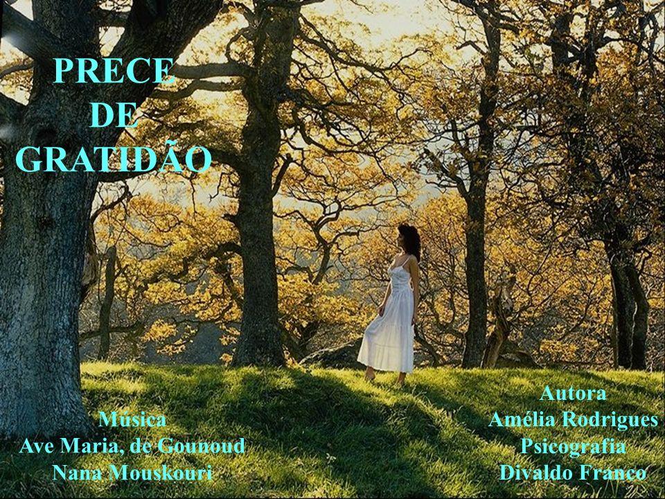 PRECE DE GRATIDÃO Autora Amélia Rodrigues Música Psicografia