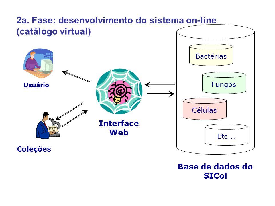 2a. Fase: desenvolvimento do sistema on-line (catálogo virtual)