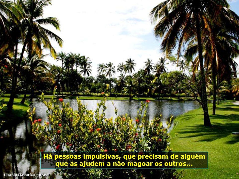 IMG_0269 - ILHA DE ITAPARICA - CLUB MED-700