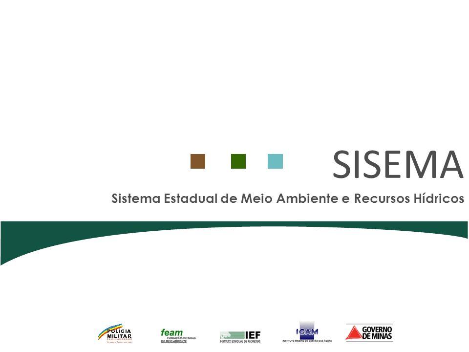 SISEMA Sistema Estadual de Meio Ambiente e Recursos Hídricos