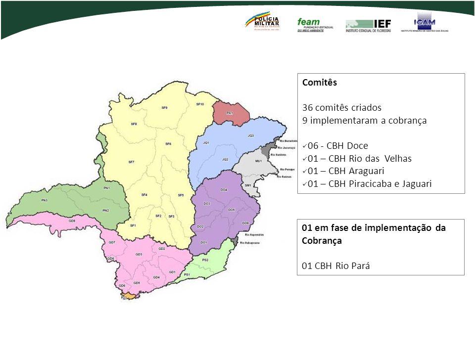 Comitês Estaduais no Brasil