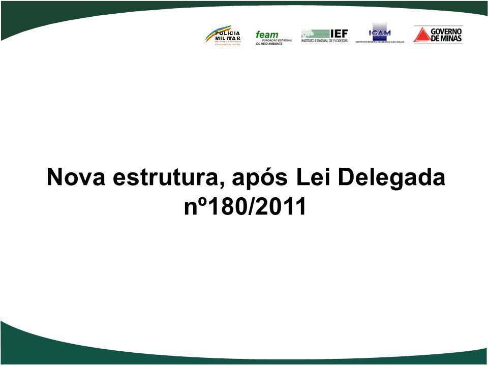 Nova estrutura, após Lei Delegada nº180/2011