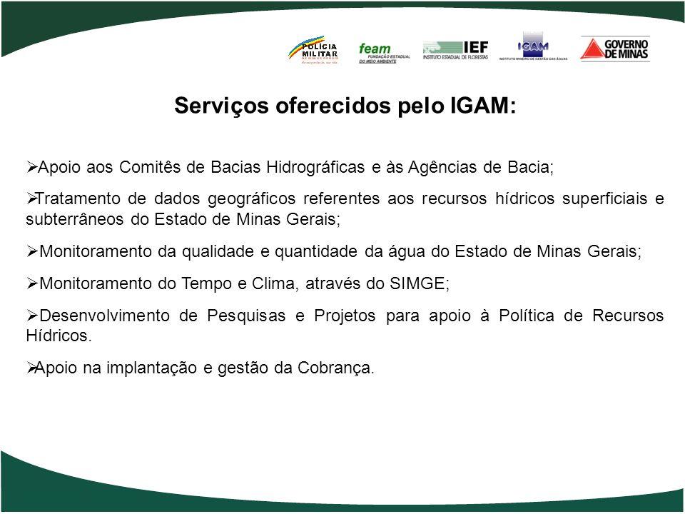 Serviços oferecidos pelo IGAM: