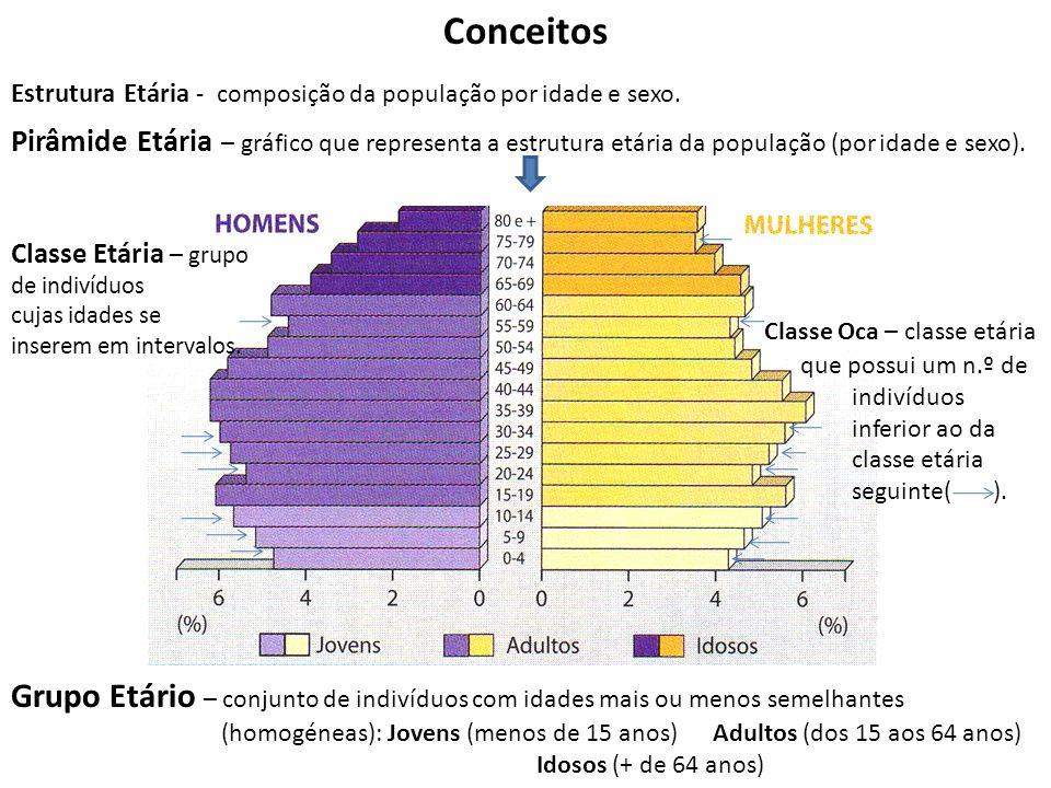 Conceitos Estrutura Etária - composição da população por idade e sexo.