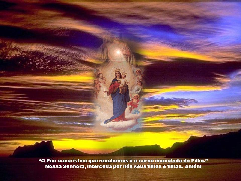 O Pão eucarístico que recebemos é a carne imaculada do Filho