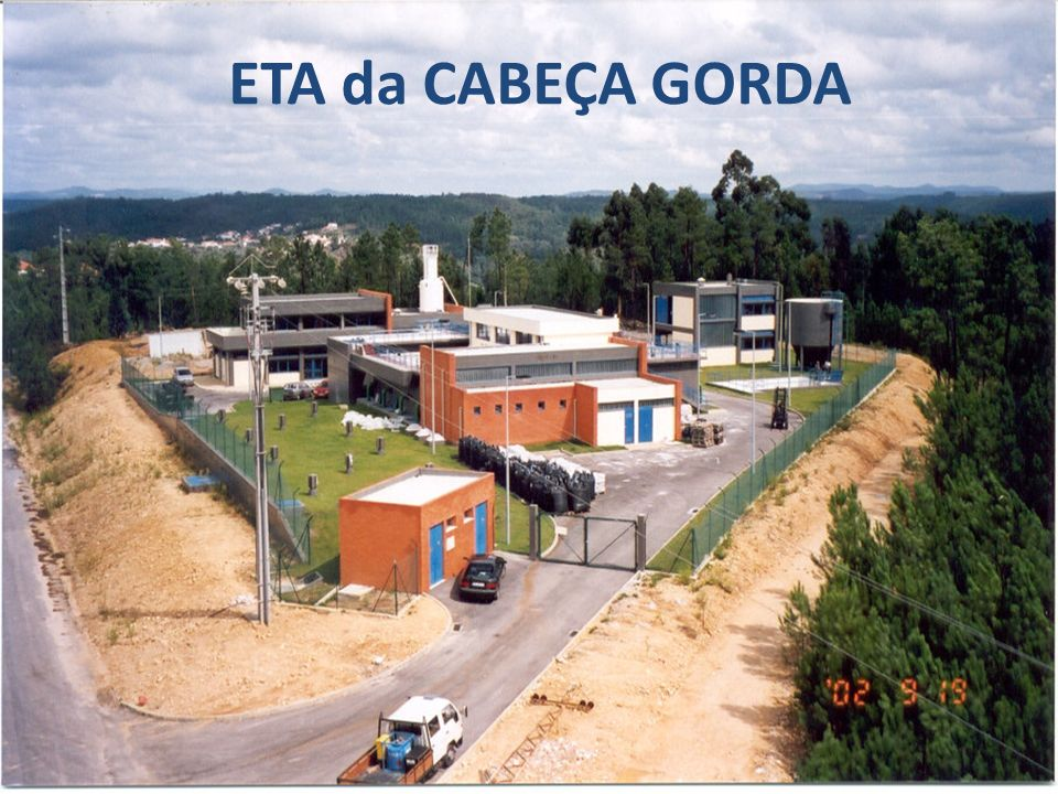 ETA da CABEÇA GORDA
