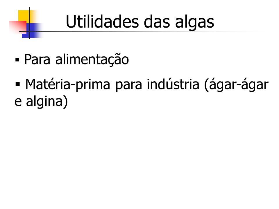 Utilidades das algas Matéria-prima para indústria (ágar-ágar e algina)