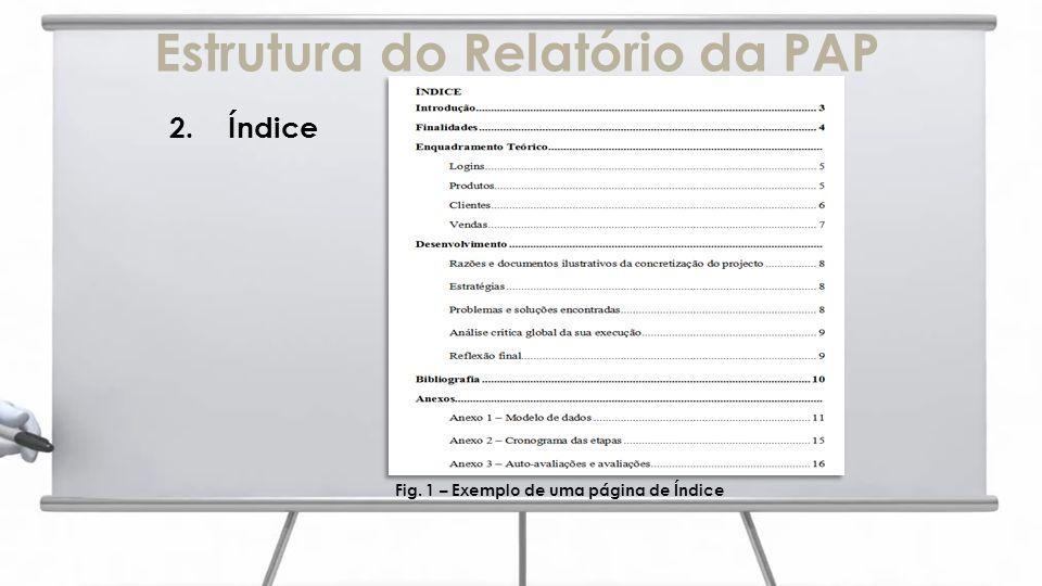 Estrutura do Relatório da PAP