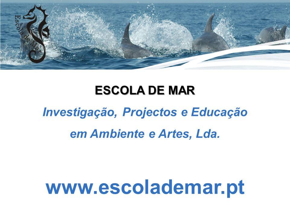 Investigação, Projectos e Educação