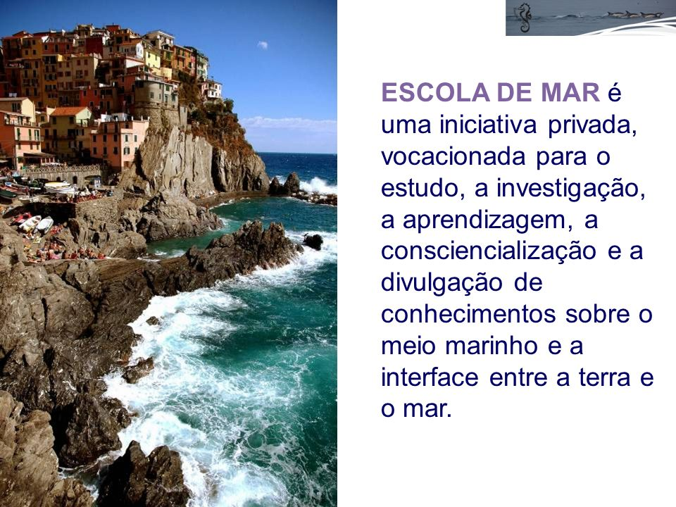 ESCOLA DE MAR é uma iniciativa privada, vocacionada para o estudo, a investigação, a aprendizagem, a consciencialização e a divulgação de conhecimentos sobre o meio marinho e a interface entre a terra e o mar.