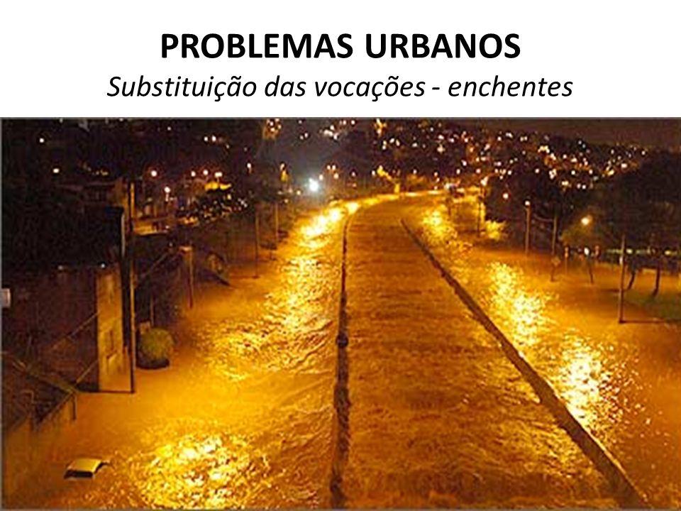 PROBLEMAS URBANOS Substituição das vocações - enchentes