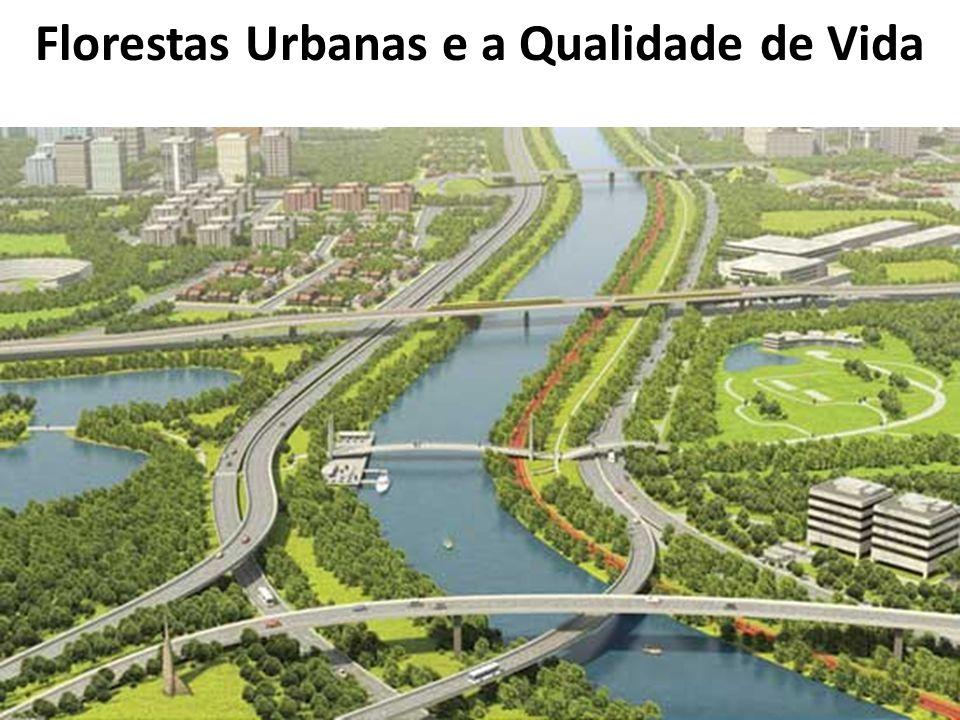 Florestas Urbanas e a Qualidade de Vida