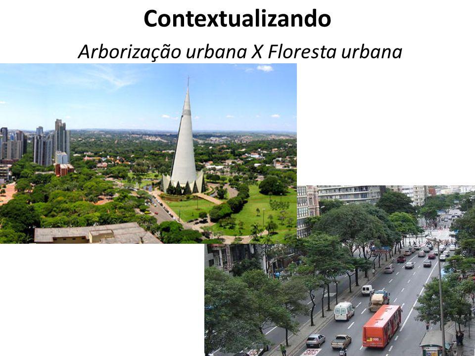 Contextualizando Arborização urbana X Floresta urbana