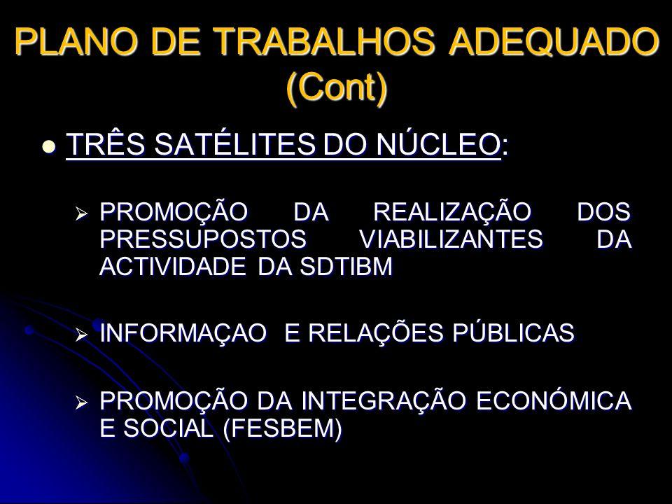 PLANO DE TRABALHOS ADEQUADO (Cont)
