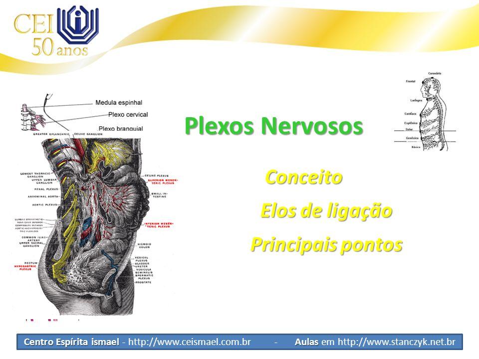 Plexos Nervosos Conceito Elos de ligação Principais pontos