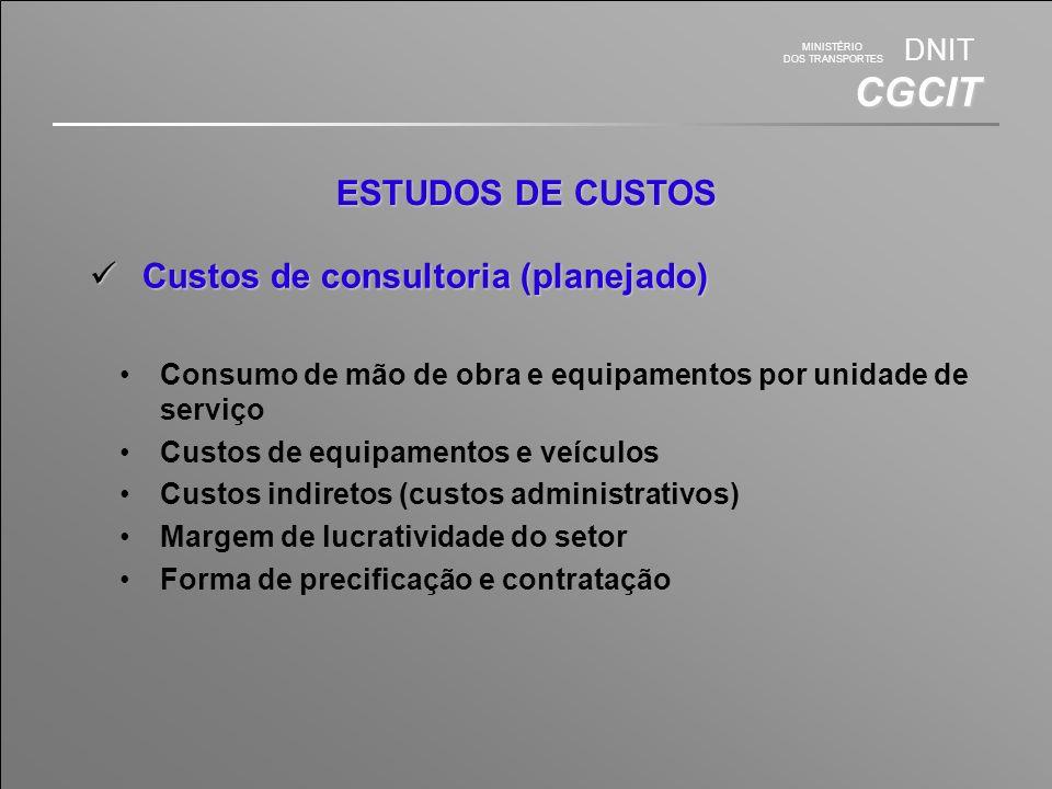 Custos de consultoria (planejado)