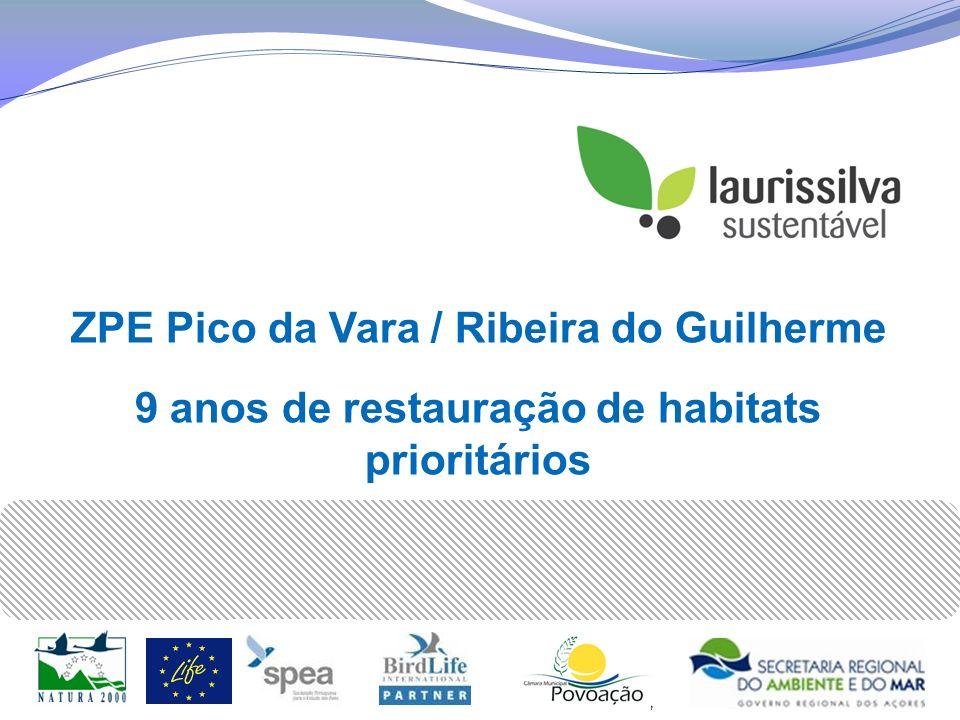 ZPE Pico da Vara / Ribeira do Guilherme