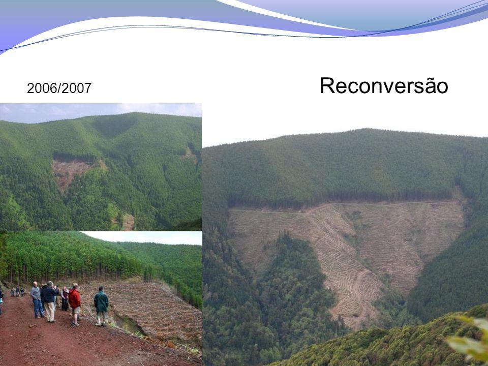 2006/2007 Reconversão
