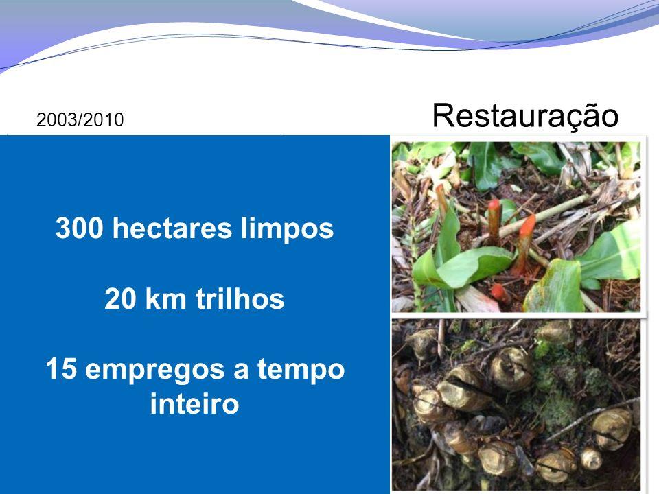 300 hectares limpos 20 km trilhos 15 empregos a tempo inteiro