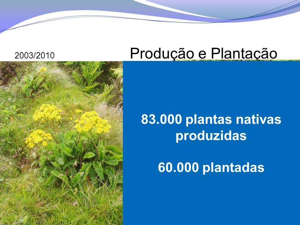 83.000 plantas nativas produzidas