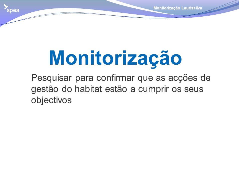 Monitorização Laurissilva