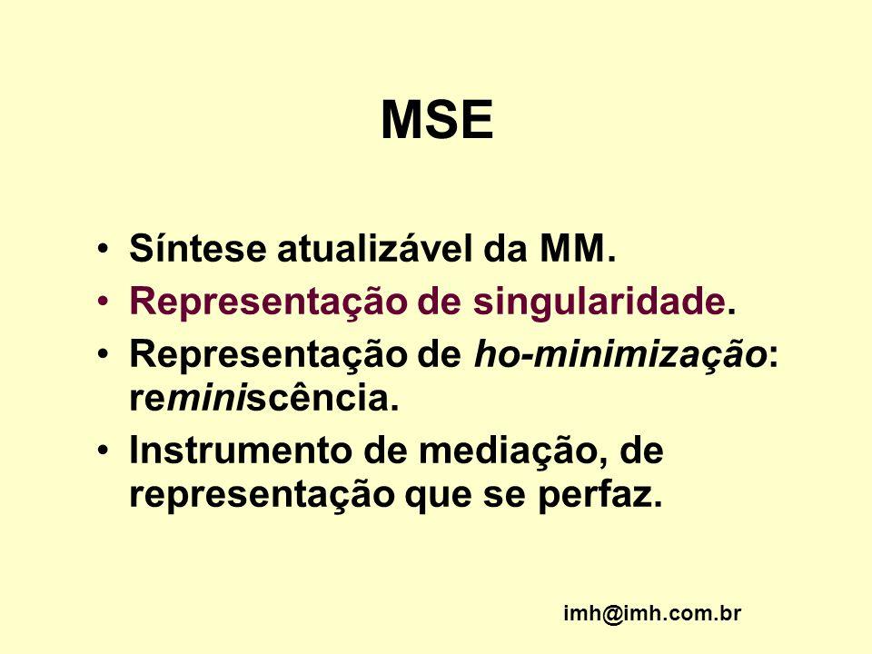 MSE Síntese atualizável da MM. Representação de singularidade.