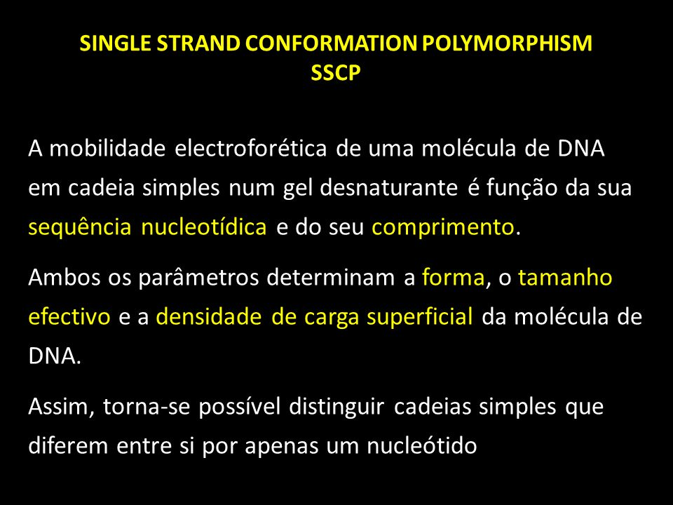 SINGLE STRAND CONFORMATION POLYMORPHISM SSCP