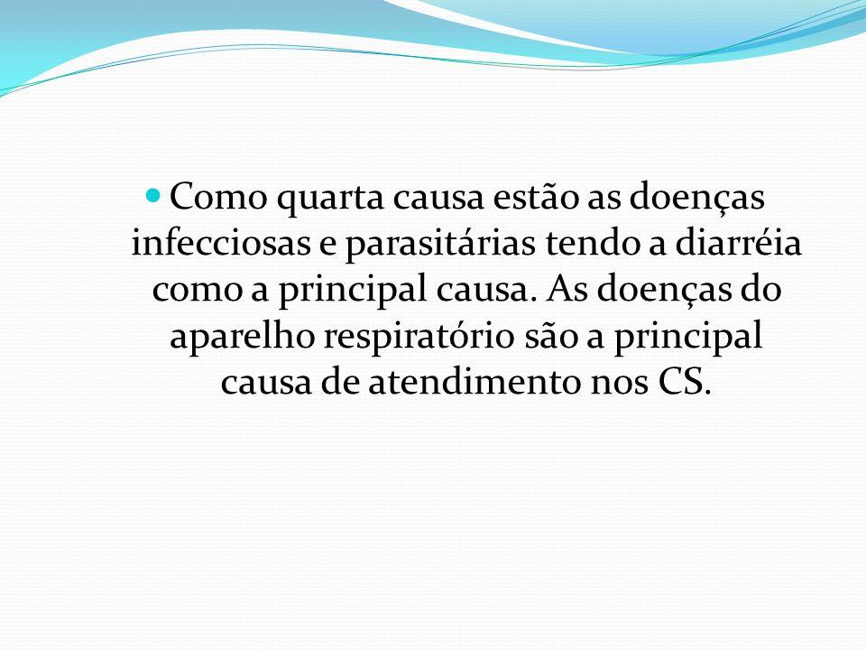Como quarta causa estão as doenças infecciosas e parasitárias tendo a diarréia como a principal causa.