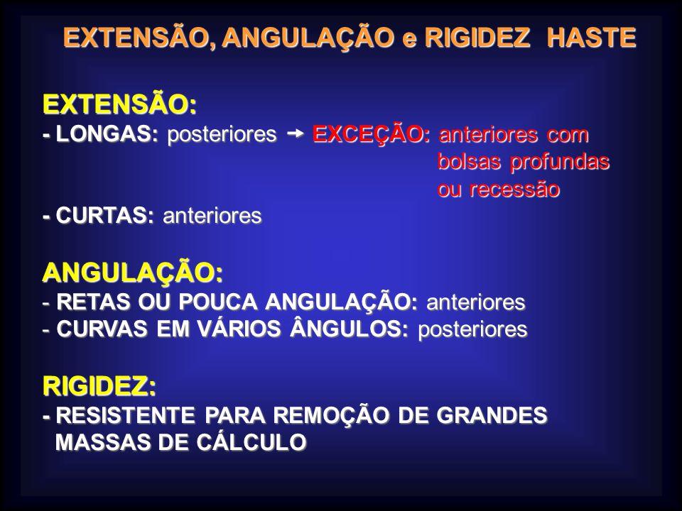 EXTENSÃO, ANGULAÇÃO e RIGIDEZ HASTE