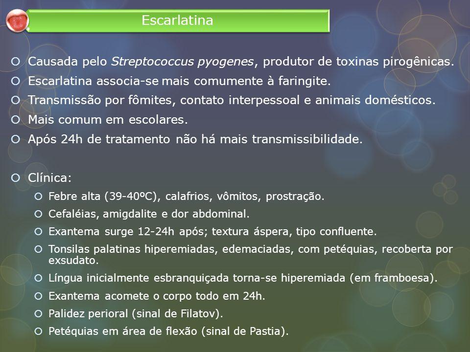 Escarlatina Causada pelo Streptococcus pyogenes, produtor de toxinas pirogênicas. Escarlatina associa-se mais comumente à faringite.