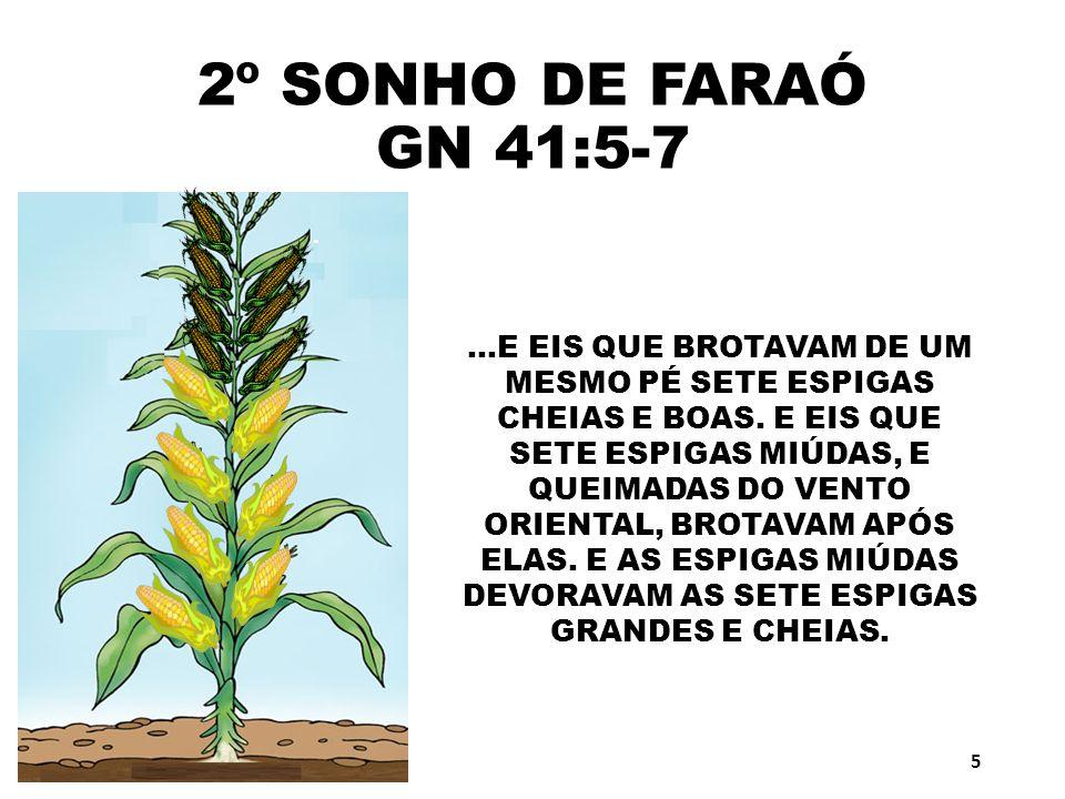 2º SONHO DE FARAÓ GN 41:5-7