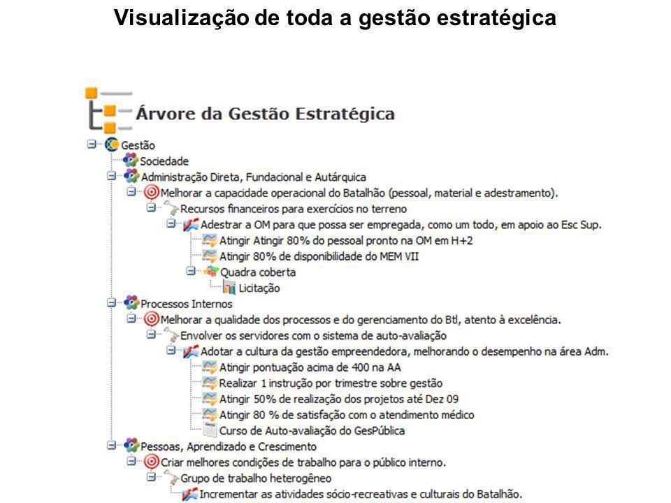 Visualização de toda a gestão estratégica
